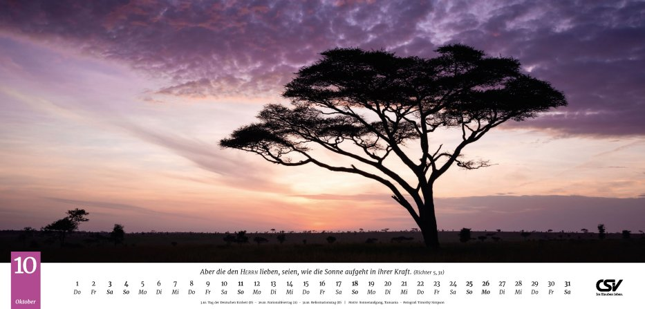 Life-is-More Panoramakalender XL